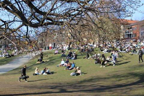 BADET I SOL: Slik så det ut i en park ved Grünerløkka da solen strålte i hovedstaden. Men det er ikke mange slike dager igjen i april, varsler meteorologen.