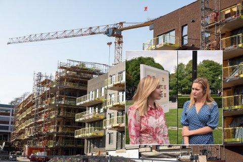 Nye boliger i Oslo Oslo 20190802. På Frysja i Oslo skal det bygges rundt 900 nye leiligheter. Foto: Audun Braastad, Henrik Heldahl NTB / Nettavsien