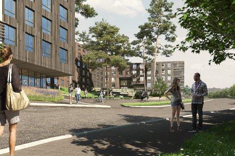 Slik ser SIO for seg nye Nordberg studentby. Plan- og bygningsetaten vil ha færre og lavere boliger.