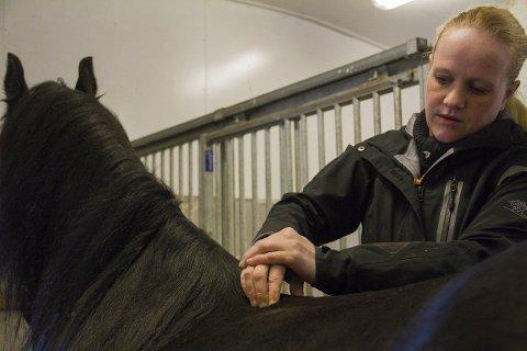 MASSØR: Ragnhild Engesæter Kjelby er utdanna hestemassør og laserterapeut på hest og hund. Her behandlar ho «Zoria Moria», som er ein av henna eigne hestar. ALLE FOTO: Sigrun Haugsdal Reknes