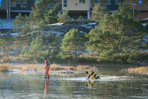Brannvesenet sende ut to overflatereddarar på isen i Lonane for å sjå om dei fann eventuelle hòl i isen.