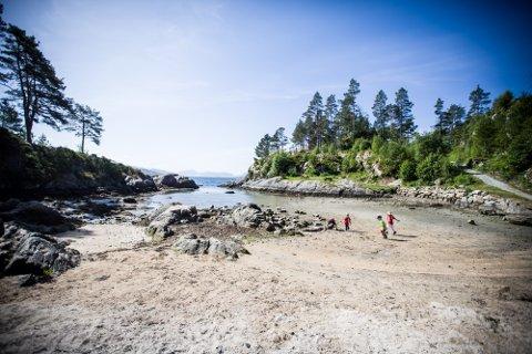Både Haltejohansvika og 41 andre badeplassar i Nordhordland og Gulen, er frie for tarmbakteriar.