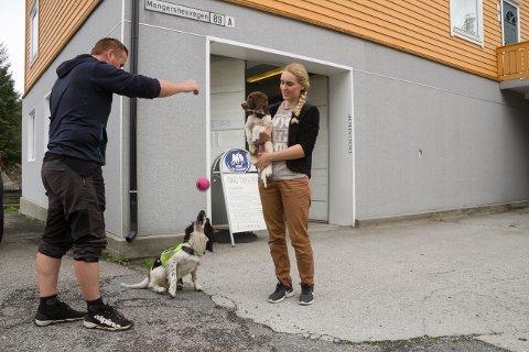 Raymond Njøten og Isabell Befring Njøten opna hundebutikk på Manger kai i august.