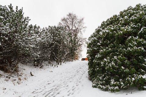 Snøen kan verta liggjande ut i neste veke