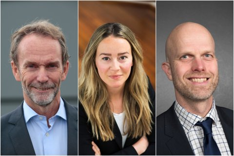 ØKOMONIEKSPERTAR: F.v.: Harald Magnus Andreassen i Swedbank, sjeføkonom Nejra Macic og økonom Hallgeir Kvadsheim.