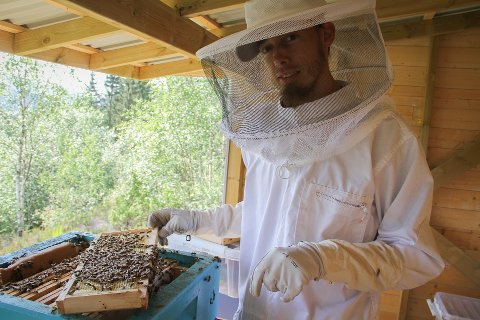 Prosjektet «Den søte smak av Alver - geografisk honning» ved Molvik bigard, er tildelt 40.000 kroner av kommunen.