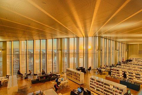 Stormen bibliotek.