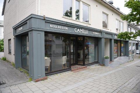 F Camelli Avisa Nordland - Camel...