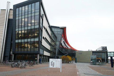 Telenors hovedkontor på Fornebu i Bærum. Foto: Terje Pedersen / NTB scanpixFoto: ( NTB scanpix)