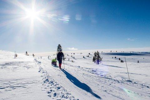 Vinstra  20170223. Sol fra nesten skyfri himmel varmer ryggen på en skiturist i løypa mellom Sulseter og Gravdalen i Sødorpfjellet i Gudbrandsdalen torsdag. Foto: Paul Kleiven / NTB scanpix NB! MODELLKLARERT!