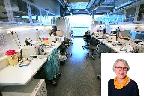 Randi Brendberg, fagsjef i Helse Nord, anbefaler delt løsning