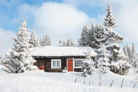 I løpet av årets to første måneder ble det meldt inn 39 forsikringssaker på frostskader i Nordland.