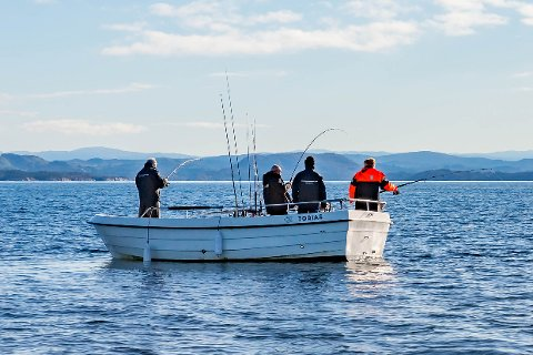 Veileder: Trond Blom i Fiskeridirektoratet bruker mye tid på å snakke med både ansatte og gjester hos turistfiskevirksomhetene i Salten-regionen og veilede dem i gjeldende regelverk. Han har vært på Saltstraumen brygge flere ganger og sier han alltid blir godt mottatt.