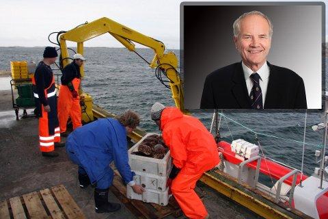Tar ut stevning: Advokat Trond S. Paulsen bekrefter overfor AN at han vil ta ut stevning etter at Helse- og omsorgsdepartementet avviste søksmålet til krabbenæringen i Bodø. Nå går det trolig mot ny runde i retten mellom partene.