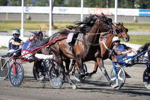 Hest er best. Fem eksperter leverer daglige tips til hestespill i Nettavisen.