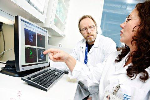 FORSKERE: Marit Otterlei ved NTNU har gjort funn av en ny antibiotika, som fungerer på en annen måte. Her er Otterlei sammen med kollega Geir Slupphaug.