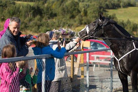 FORTJENT KOS: Myr Faksen får belønning etter et løp i Bodø. Nå skal hesten fra Troms til Bodø igjen for å kjempe om titusener av kroner.