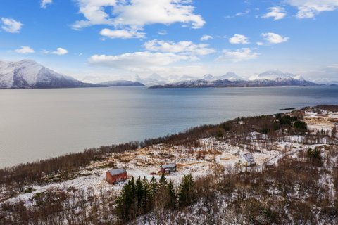Ved havet: Småbruket er sørvendt og grenser opp mot Nordfoldfjorden. Omgivelsene er det ingenting å si på.