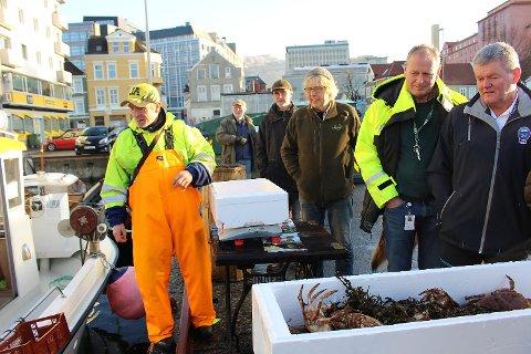 I desember startet det aller første fiskesalget på Nøstet. Nå er flere fiskere som har søkt om tillatelse.