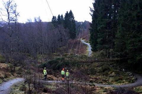 Feilretting i forbindelse med strømbruddet som oppsto i Vardalen i nærheten av Valestrandfsossen på Osterøy i 0730-tiden 2. juledag. 133 kunder ble berørt og BKK venter innkobling 1600 mandag.