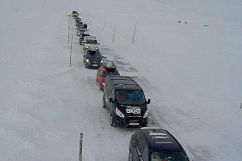 Kø på østsiden av Hardangervidden.