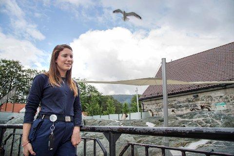 – Måkene har alltid vært et problem, men det har aldri vært så gale som denne sesongen, sier verneombud og førstekoordinator for akvarier, Natalie Stenfeldt.