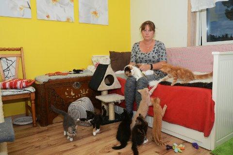 Irene Bjorøy Wiig med kattene.