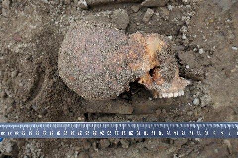 Her er en av hodeskallene som ble funnet. Tilsammen ble det funnet levninger fra mellom 50 og seksti mennesker.