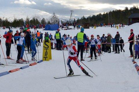 Totalt 250 løpere stilte til start på Vikingrennet i Ulvik søndag.