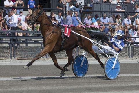 Den ti år gamle vallaken Deep Sea Dream har kjørt inn 2.052.034 kroner på karrierens 149 første løp. 39 av startene har endt med førsteplass. FOTO: Hesteguiden.com