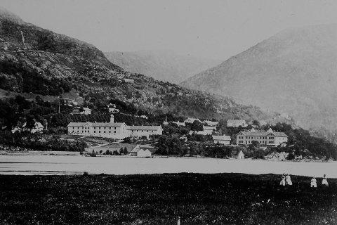 Her ser vi byens to store statsfinansierte leprainstitusjoner. Til høyre ligger                     forskningssykehuset Lungegaardshospitalet, opprettet i 1849 for å gi D. C. Danielssen muligheten til å finne en kur mot sykdommen. Til venstre ser vi Pleiestiftelsen no. 1, isolasjonsanstalten bygget i 1857.