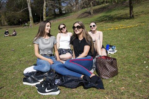 FINT I VARMEN: Camilla Solberg (21), Christina Wittusen (21), Andrea Grenersen (23) og Maren Johnsen (21) hadde en lang dag foran seg da BA snakket med dem i 13-tiden i Nygårdsparken i går. FOTO: ANDERS KJØLEN