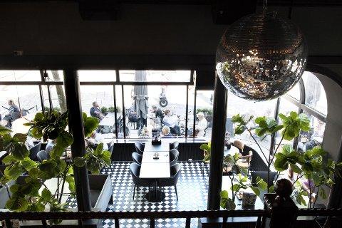 Sobert og stilfullt lokale med stoler trukket i moderne møbelstoffer og eksotiske store og grønne palmer.