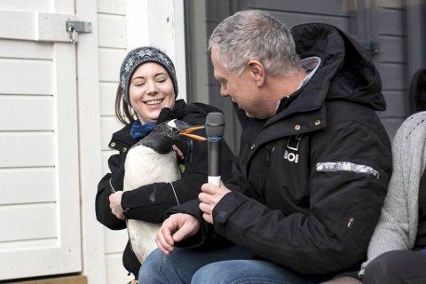 Roald Amundsen i BOB er fadder for pingvinen Bobby.