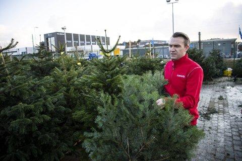 Regionsjef for nordvestlandet i Plantasjen, Ole Christian Nilsen, sier de ikke skal la Coop ta fra dem juletremarkedet.