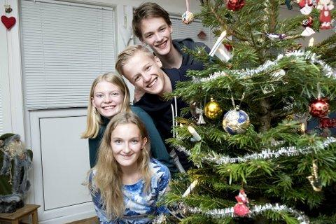 Fra øverst Olav, Simen, Anna og Maja Fjeldsbø Marøy (15) gleder seg til å feire jul hjemme i Loddefjord.