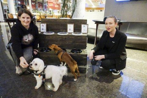 Her er to av hundene som tilbringer nyttårsaften på hundehotellet på Flesland. Fra v. Kristin Lygre med Efez (5 1/2) og May-Linn Kronhaug med Ailo (5).