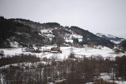 Blindheimsdalen er blant de siste jordbruksområdene i drift i Bergen. FOTO: EMIL WEATHERHEAD BREISTEIN