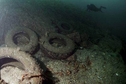 Store gummidekk finner dykkerne mange steder.