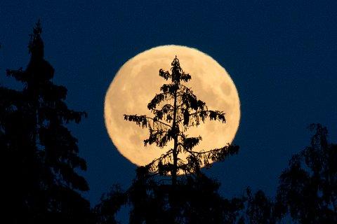 Fullmåner er tradisjonelt sett skumle greier, og for mange blir det ikke mindre skummelt av at det er fredag den 13. samtidig. Fredagens fullmåne er til og med en sjelden mikromåne, og det er 13 år til noe sånt skjer igjen.