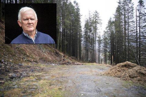 Bent Raknes er tidligere drapsetterforsker. Han mener drapene fremstår som lite planlagt.