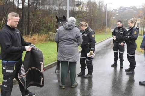 Politiet kom raskt på plass etter at forbipasserende hadde fått kontroll på hesten.
