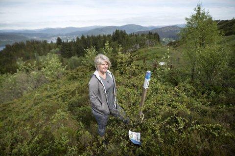 Her har Marit Brox funnet en gammel stolpe som har dukket opp igjen, mens den nye i samme område er blitt borte.