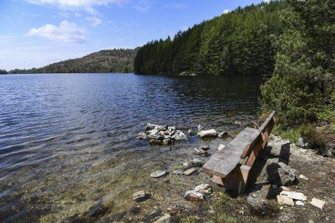 Når vannet står høyt, blir denne benken ytterst på pynten lite brukervennlig.