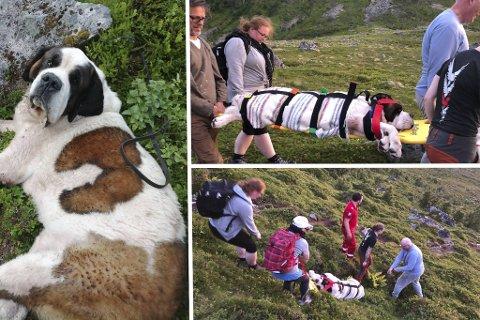 Det ble en strabasiøs ferd for de sju som bar Chumblee ned fra fjellet.