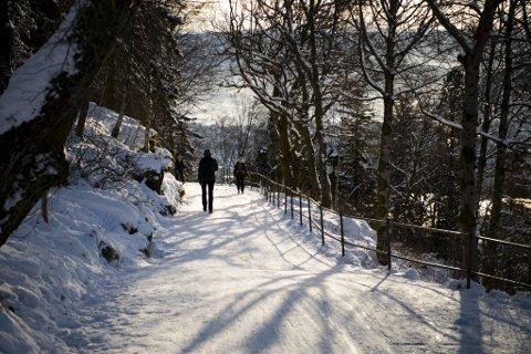 Strenge nasjonale besøksråd pluss nydelig vintervær gir slike bilder fra Bergen.