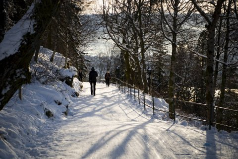 Nydelig vintervær på Fløyen tidligere denne måneden. Det klare, fine været ser ut til å fortsette.