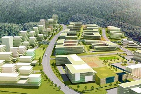Den nye batterifabrikken Panasonic, Hydro og Equinor planlegger i Norge skal gi 2000 nye arbeidsplasser.Bjørnafjorden håper at den skal bli plassert her.