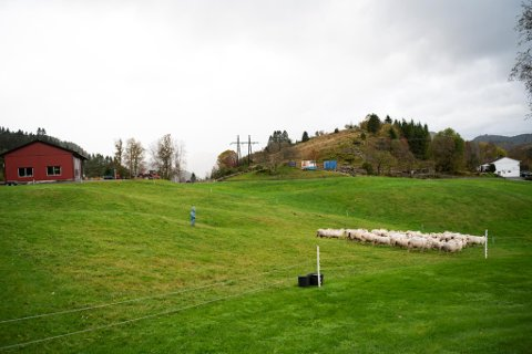 Et stort, sammenhengende jordbruksområde mellom Indre Arna og Vågsbotn står i fare for å bli lagt under asfalt.