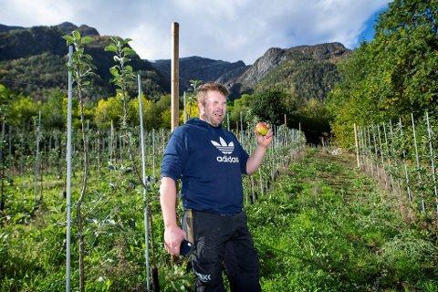 Joar Førde forbereder seg på å starte siderproduksjon på gården Måge i Hardanger. Han har plantet eplesorten Bramleys Siedling, men det er ingen nytelse å spise dem.